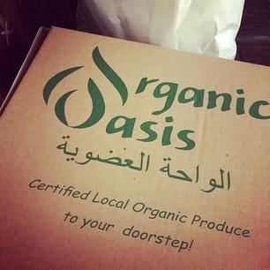 organicoasis_main
