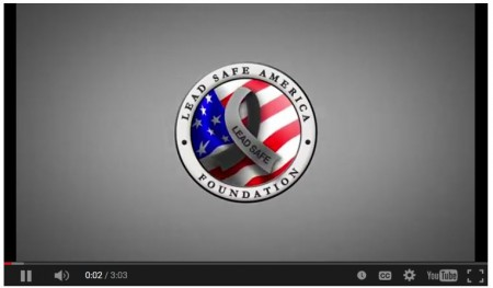 MisLead America Lead Safe America Foundation