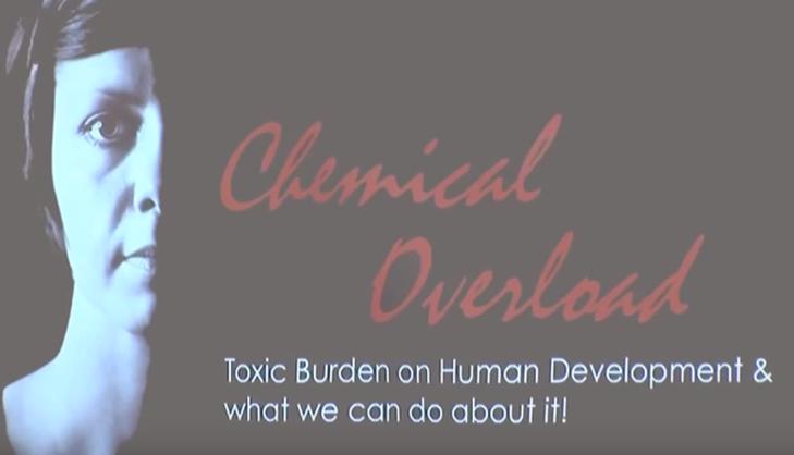 Sarah Lantz -toxic burdon