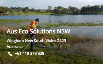 Aus Eco NSW Steam Weeding