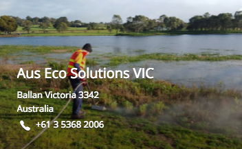 Aus Eco VIC Steam Weeding