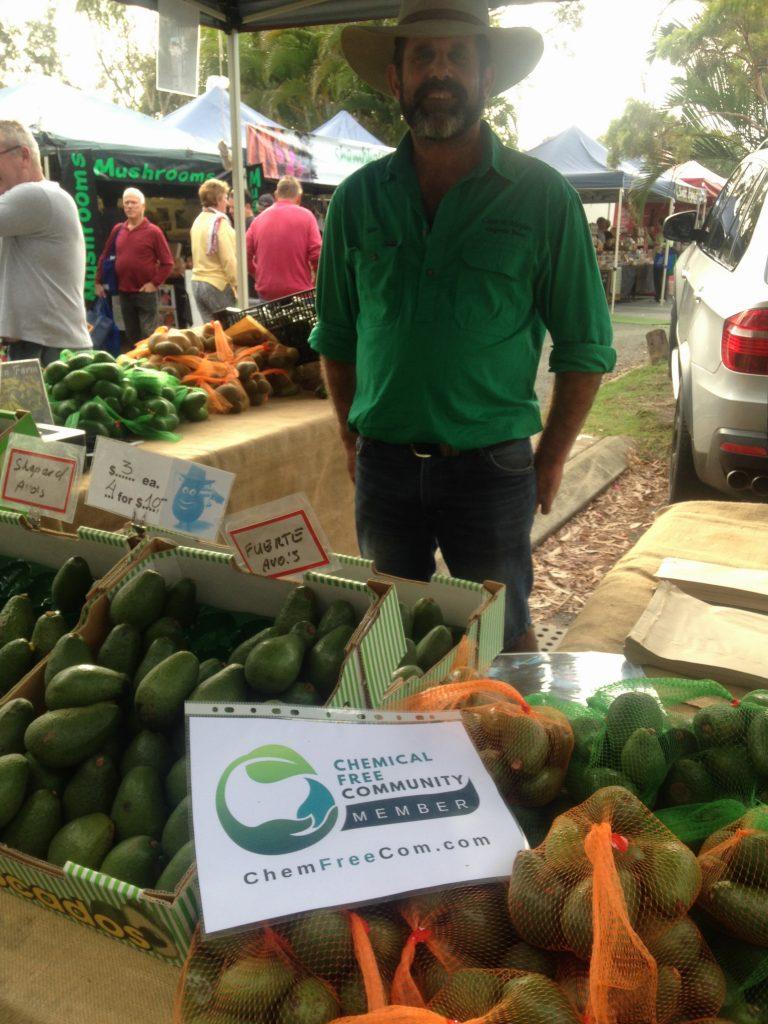 Casa De Maylen certified organic avocadoes