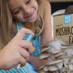 Science Supply Australia-Mushroom farm