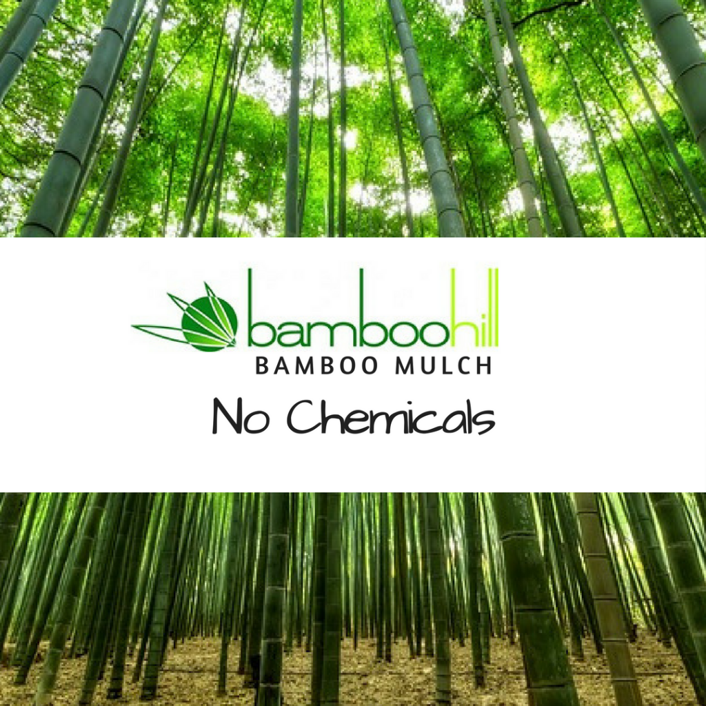 BambooHill Bamboo Mulch - No Chemicals