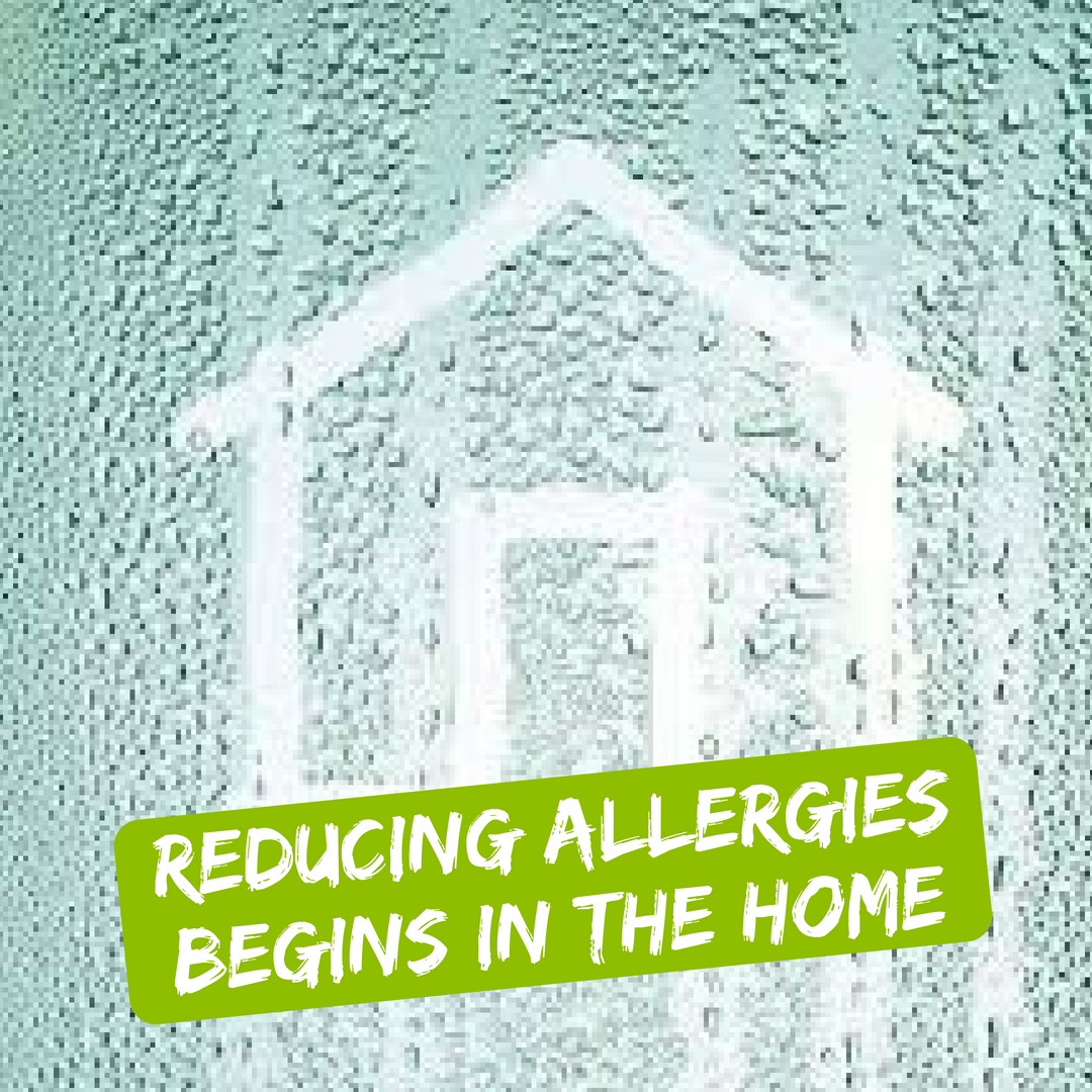 Reducing Allergies Begins In The Home