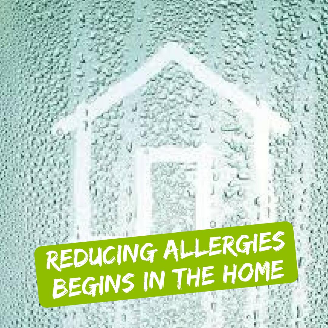 Reducing Allergies Begins In The Home