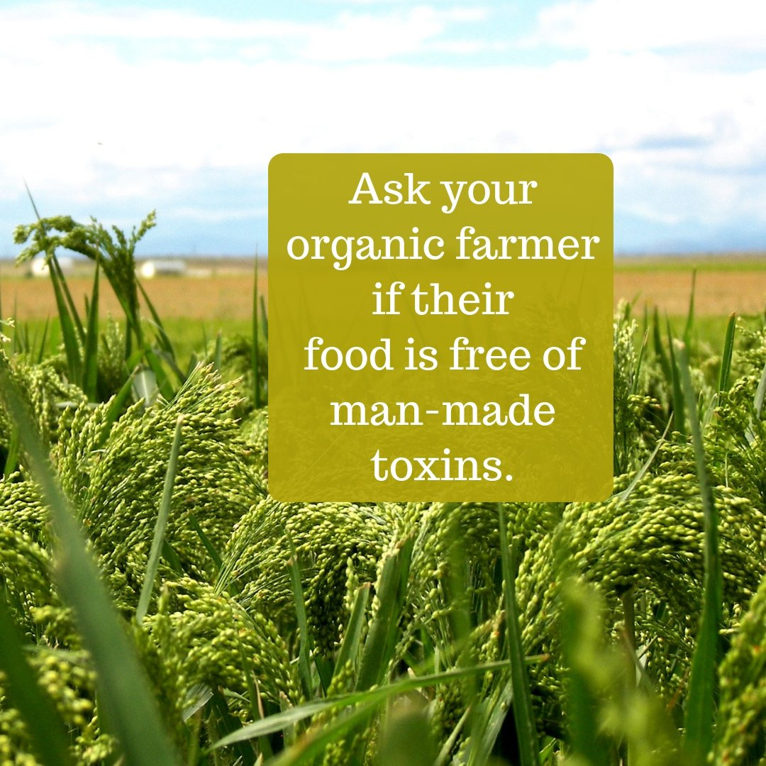 Ask your organic farmer if their food is free of man-made toxins?