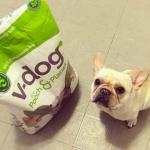 V-Dog & Oh Crap Dog Poop Bags