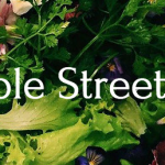 The Maple Street Co-Op