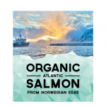 This FishAtlantic Salmon - chemical free salmon